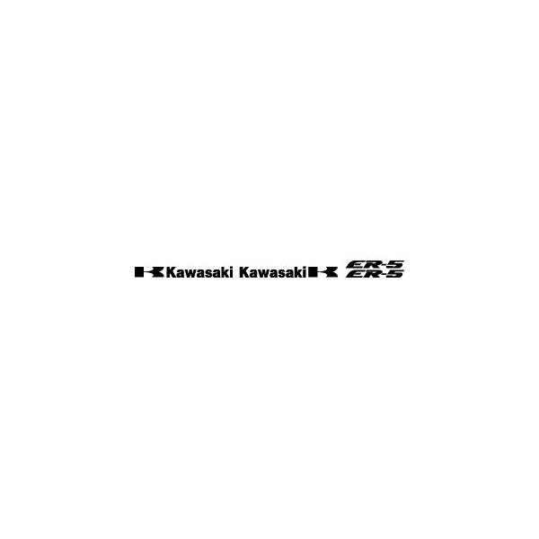 Kit Kawasaki ER5