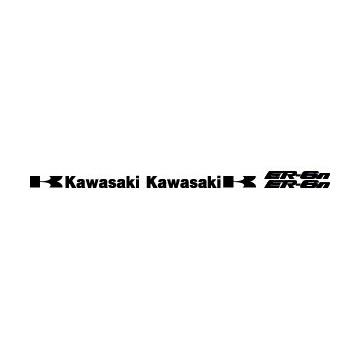 Kit Kawasaki ER6N