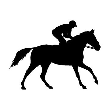 Decals Horse