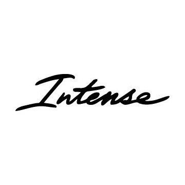 Armin Van Buuren Intense