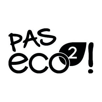 Renault Pas Eco2 !