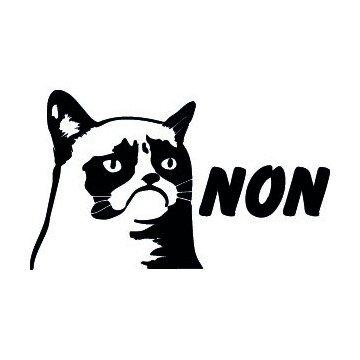 Grumpy Cat Non
