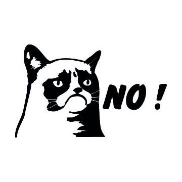 Grumpy Cat No !
