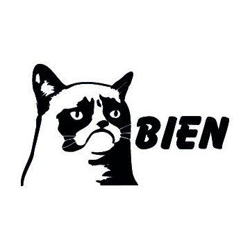 Grumpy Cat Bien