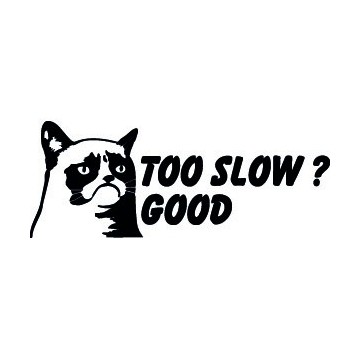Grumpy Cat Too Slow ? Good