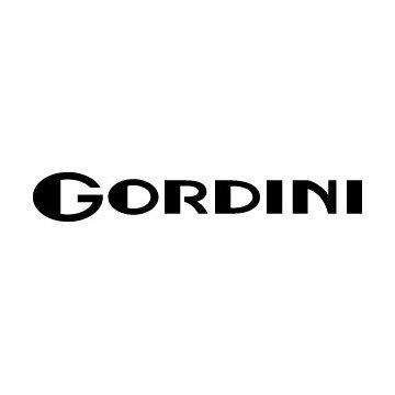 Renault Gordini 2010