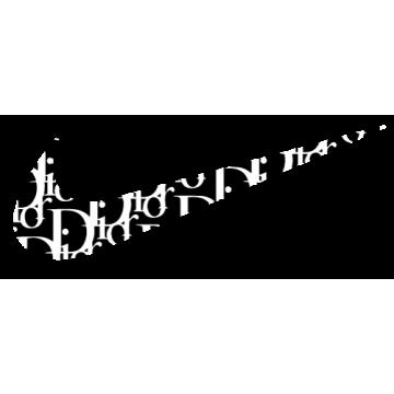 Swoosh x Dior imprimé