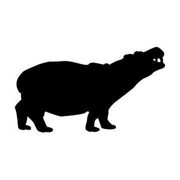 Hippopotame 2