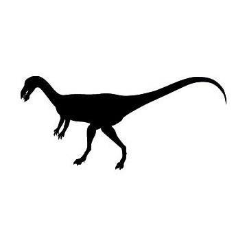 Dinosaure 20