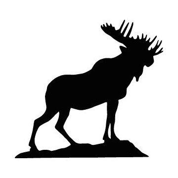 Orignal - Moose
