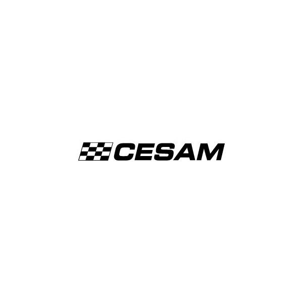 Cesam